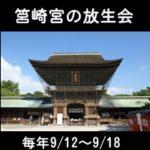 博多の祭りで「放生会」←正しくは何と呼ぶの?18日で終わりです!